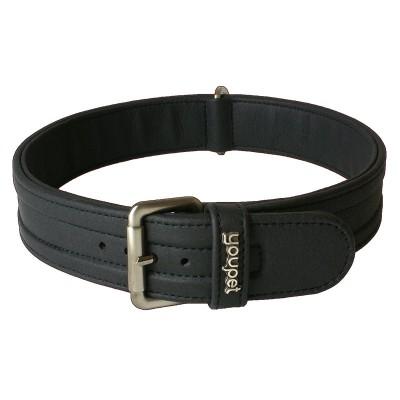 Collar Dared