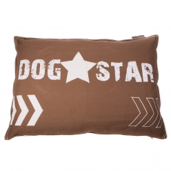 CAMA DOG STAR