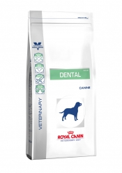CANINE DENTAL