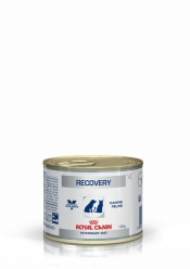 RECOVERY WET